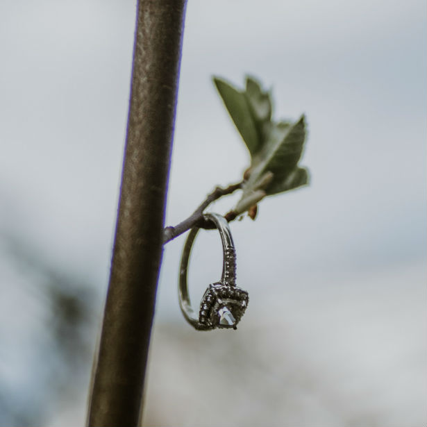 diamond engagement ring hanging from branch