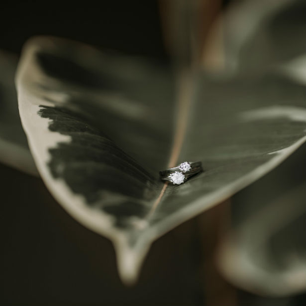 diamond engagement rings sitting on a leaf
