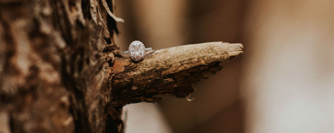 oval halo engagement ring on branch